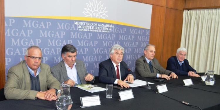 Resultado de imagen para Estados Unidos habilitó ingreso de carne ovina uruguaya