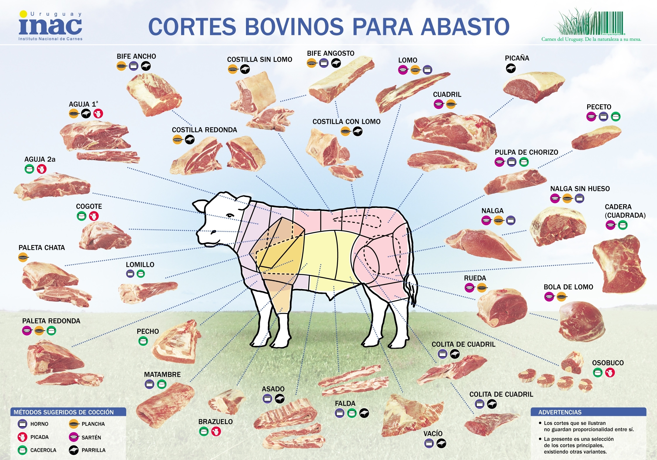 Latin american cook beef in the land of beef lovers uruguay beef chart pooptronica